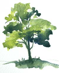 paint a simple tree in watercolour