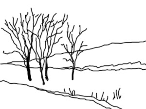 trees and stream sketch