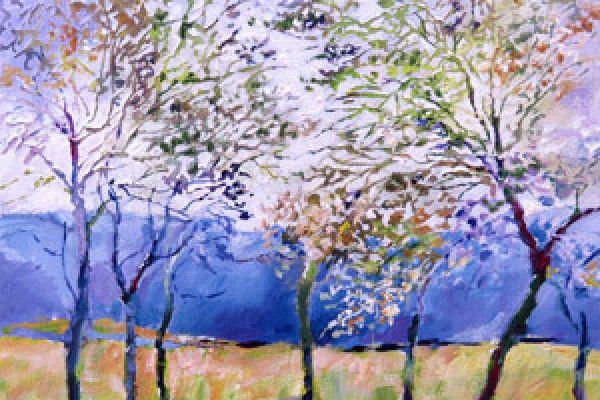 spring-trees18093900-A73B-97AF-9500-89D0165698BA.jpg